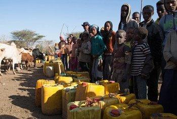 En février 2016, des villageois rassemblés à un point d'eau à Ziway Dugda Woreda, en Ethiopie. Photo OCHA/Charlotte Cans