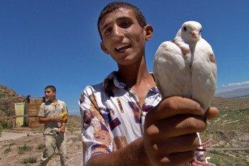 Армянский мальчик держит в руках белого голубя - символ мира.