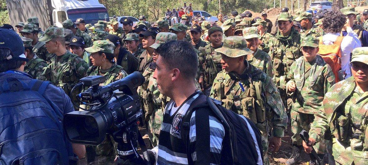 Guerrilleros de las FARC en la Guajira se encaminan a entregar las armas.