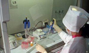 A laboratory specialist researching on avian influenza at a human health lab. (file)