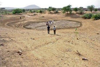 Un trou d'eau asséché au Kenya. Photo FAO/Kenya Team