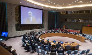 Nickolay Mladenov (shown on screen), UN Special Coordinator for the Middle East Peace Process and Personal Representative of the Secretary-General to the Palestine Liberation Organization and the Palestinian Authority, briefs the Security Council via video teleconference.