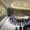 El Consejo de Seguridad guarda un minuto de silencio en memoria del embajador de Rusia, Vitaly Churkin. Foto: ONU/Rick Bajornas