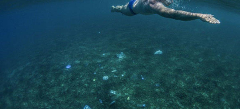 Basura en el fondo del Mar Arábigo. Foto: PNUMA