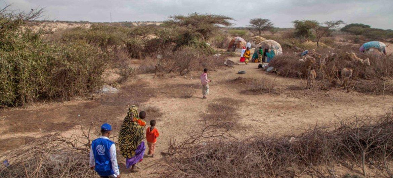 干旱天气导致索马里面临饥荒。