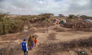 Somalia is facing famine triggered by a major drought.