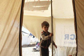Un garçon âgé de 3 ans dans un camp de déplacés près de Mossoul, en Iraq. Photo HCR/Caroline Gluck
