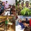 Instituto de Tecnología de Pakistán. Cooperativa rural de mujeres en Guinea. Mujeres empresarias y trabajadoras en Líbano.
