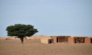 Le Maroc. Photo PNUD/Dylan Lowthian
