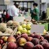 意大利罗马一家由合作社经营的蔬果市场。