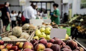 Un marché dans une coopérative alimentaire faisant partie de la ferme coopérative d'Orto Sole à Fiumicino et Torrimpietra, en Italie.