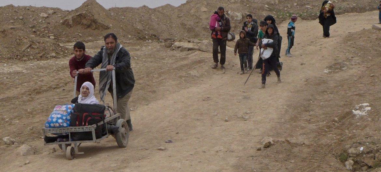 伊拉克摩苏尔。联合国区域信息网图片/Tom Westcott