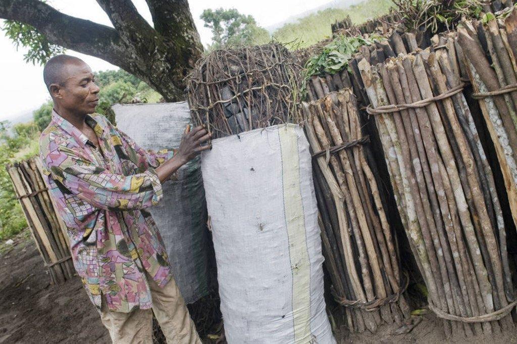 Mkaa unaotokana na miti unachangia katika uharibifu wa mazingira lakini sasa ukwajukwaju watumika huko Ethiopia kuandaa mkaa