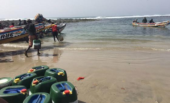 Acidificação dos oceanos afeta setor das pescas e comunidades costeiras