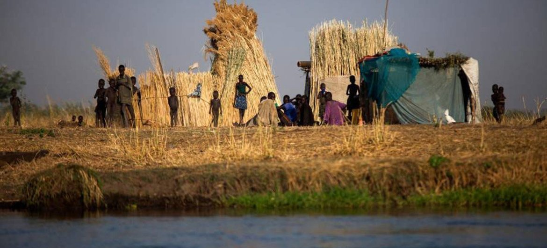 Una famila en Terekeka, Sudán del Sur. Foto: FAO/ Albert González Farran