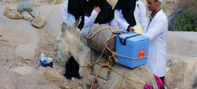 Trabajadore de salud y voluntarios de la campaña de vacunación en Yemen. Foto: UNICEF/Al-Zikri