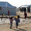 أطفال يحملون زيتا للطهي في مخيم للنازحين داخليا في ضواحي الفلوجة، العراق.