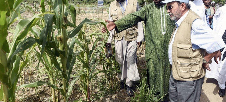 Le Directeur général de la FAO, José Graziano da Silva (à droite), début d'avril 2017, a visité certaines des régions les plus touchées par la faim et la pauvreté au Tchad et dans le nord-est du Nigéria. Photo FAO/Pius Utomi Ekpei