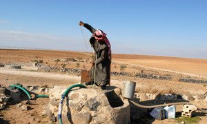 Un homme puise de l'eau pour arroser son champ en Jordanie. Photo FIDA/Lana Slezic