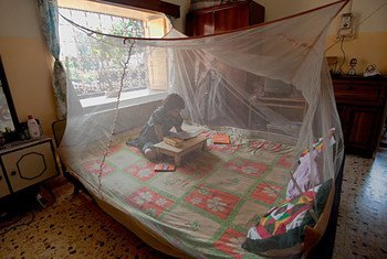 A young girl reads inside a mosquito net in West Bengal, India.
