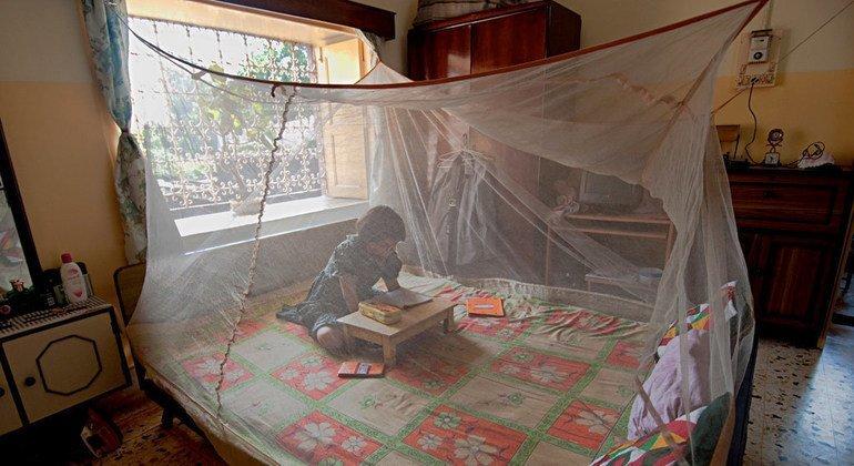 Cетки, защищающие от комаров, – главный инструмент предотвращения заражения малярией.