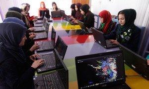 阿富汗西部的女孩正在一家技术中心学习编写代码。