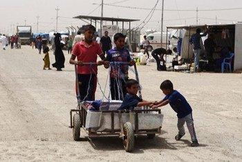 Des centaines de milliers de personnes déplacées en Iraq vont devoir affronter les chaleurs de l'été. Photo OIM