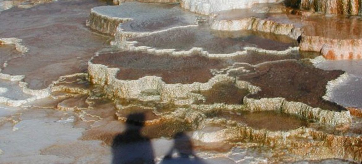 Mammoth Hot Springs, in Yellowstone National Park, host thermophilic bacteria which colour the travertine terraces (Wyoming, USA - 2007).