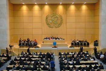 Estados-membros participam no evento virtual para definir a atuação da OMS e nomear o novo diretor-geral