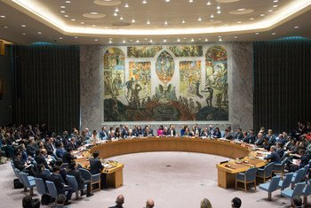 Совет Безопасности ООН обсудил возможность создания нового органа по расследованию применеия химоружия в Сирии Фото ООН/Эскиндер Дебебе