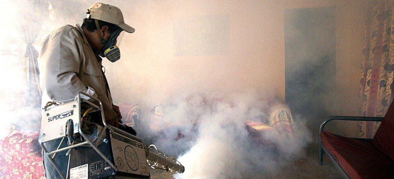 A Aiea lembra que os mosquitos, que transmitem as doenças, estão cada vez mais resistentes a inseticidas