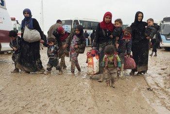 Familias iraquíes desplazadas de Mosul y zonas aledañas. Foto de archivo: ACNUR/Caroline Gluck