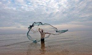Un pêcheur à Timor Leste jette son filet dans l'eau pour attraper de petits poissons.