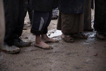 В Сирии -29 тысяч детей и подростков, которые оказались там в качестве членов семей боевиков ИГИЛ или были завербованы в ряды игиловцев