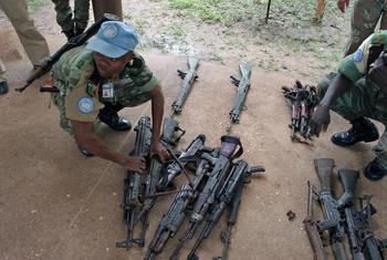 Un Casque bleu de l'ONUCI inspecte des armes remises par des miliciens dans le cadre du processus de DDR en Côte d'Ivoire (archives). Photo ONU/Ky Chung