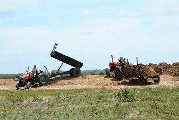 Farmers unload soil in Sri Lanka.