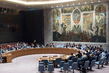 Security Council meeting on 30 June 2017.