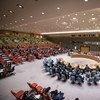 Совет Безопасности ООН. Фото ООН/Мануэль Элиас