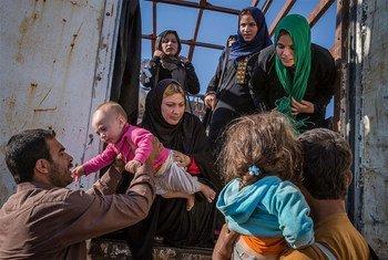 Des personnes déplacées iraquiennes, principalement originaires de Gogjali, à l'extrême est de Mossoul, arrivent au camp Hasansham du HCR.