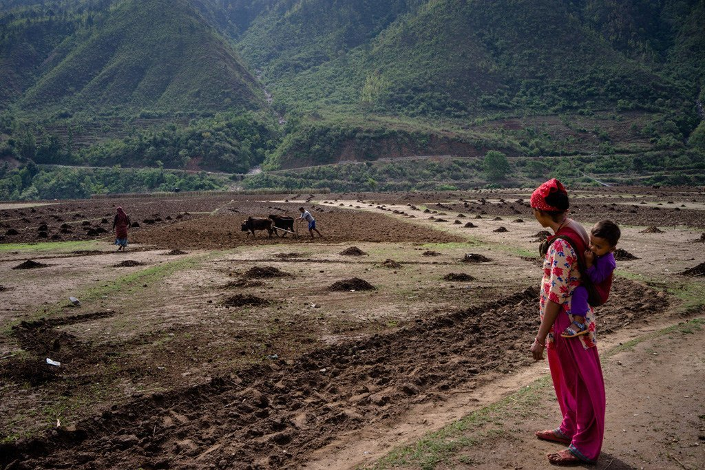 A woman, with her child on her back, looks to her husband who ploughs the field in rural Salyan district, in western Nepal.