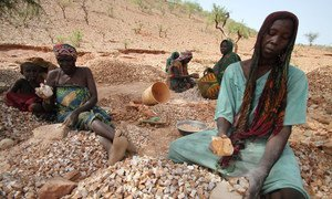 Des femmes du camp de personnes déplacées de Koloma, à Goz Beida, dans l'est du Tchad, brisent des roches pour faire du gravier.