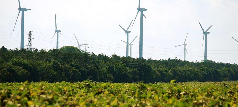 A wind farm near Kavarna, Bulgaria.