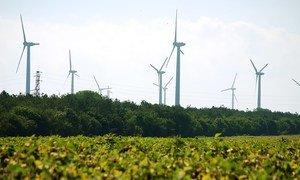 Европейский Союз выделит четверть своего следующего бюджета на борьбу с изменением климата. На фото: ветряная электростанция в Болгарии.