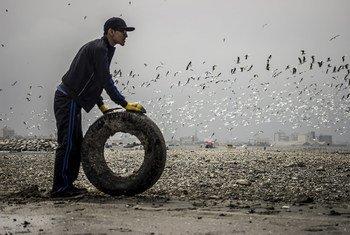 First prize winning photo portrays a volunteer removing a tire from a beach in Lima, Peru, taken by Nicolas Monteverde Bustamante of Universidad Peruana de Ciencias Aplicadas, Lima, Peru.