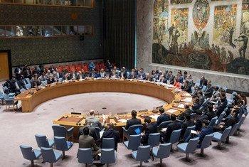 مجلس الأمن الدولي.