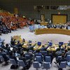 Wide view of the Security Council adopting a resolution extending the mandate of the UN Peacekeeping Force in Cyprus (UNFICYP).