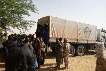 المنظمة الدولية للهجرة تنقذ بالتعاون مع هيئة الحماية المدنية النيجيرية 23 مهاجرا من غامبيا والسنغال الذين هجرهم سائقوهم.