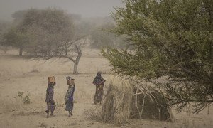 Women walk at a camp sheltering internally displaced persons in Mellia, Lac region, in western Chad. (file photo)