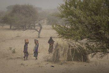 Un site de personnes déplacées à Mellia, au Tchad. Photo OCHA/Ivo Brandau