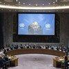 Спецпредставитель Генсека ООН по Косово Захир Танин выступает перед членами Совета Безопасности. Фото ООН/К.Хогтон